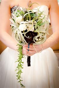 Hướng dẫn cách tổ chức đám cưới thân thiện với môi trường