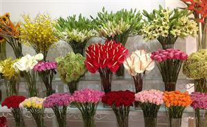Hướng dẫn cách giữ hoa tươi lâu tàn
