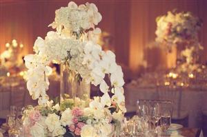 Ý nghĩa hoa Lan Hồ Điệp trong tiệc cưới