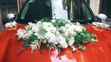 xe hoa cuoi 3