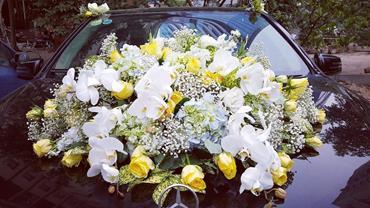 xe hoa cuoi 5