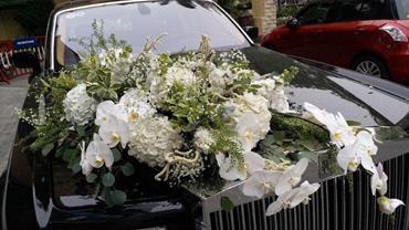 xe hoa cuoi